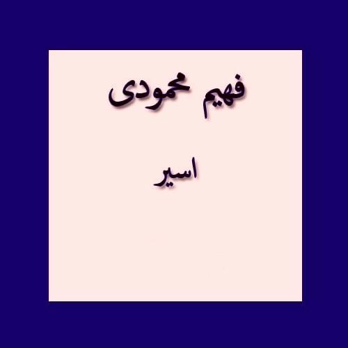 فهیم محمودی اسیر