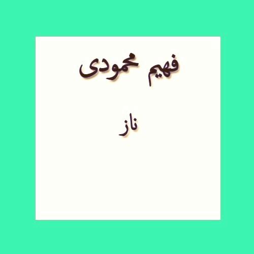 فهیم محمودی ناز