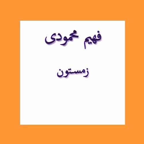 فهیم محمودی زمستون